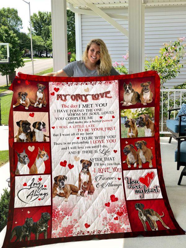 Boxer Dog V2 Quilt Blanket I1d2